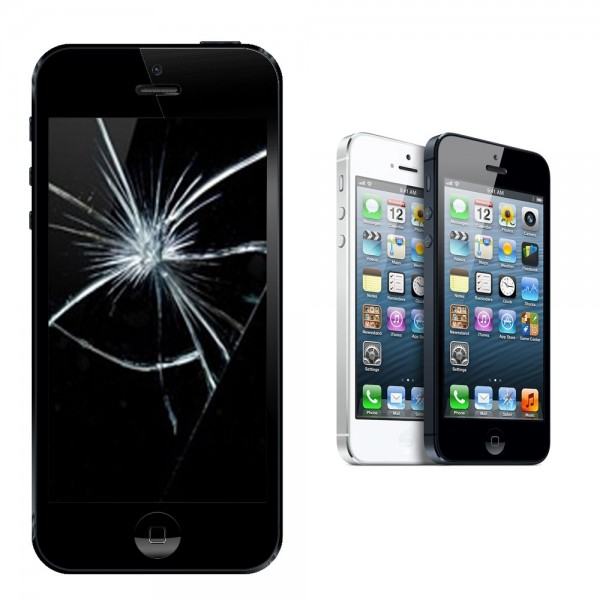 Apple iPhone 5 Display Glasscheibe Reparatur
